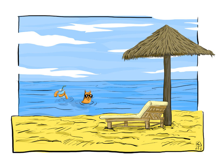 plage-chat